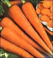 carote sott'aceto.jpg